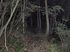 夕暮れ後の山道