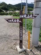 大日寺、焼山寺