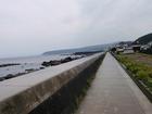 堤防沿いの道