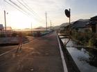 朝の遍路道(36番青龍寺へ)
