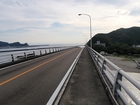 長い宇佐大橋